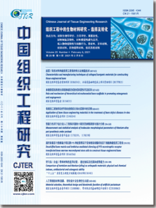 Chinese Journal of Tissue Engineering Research 2021